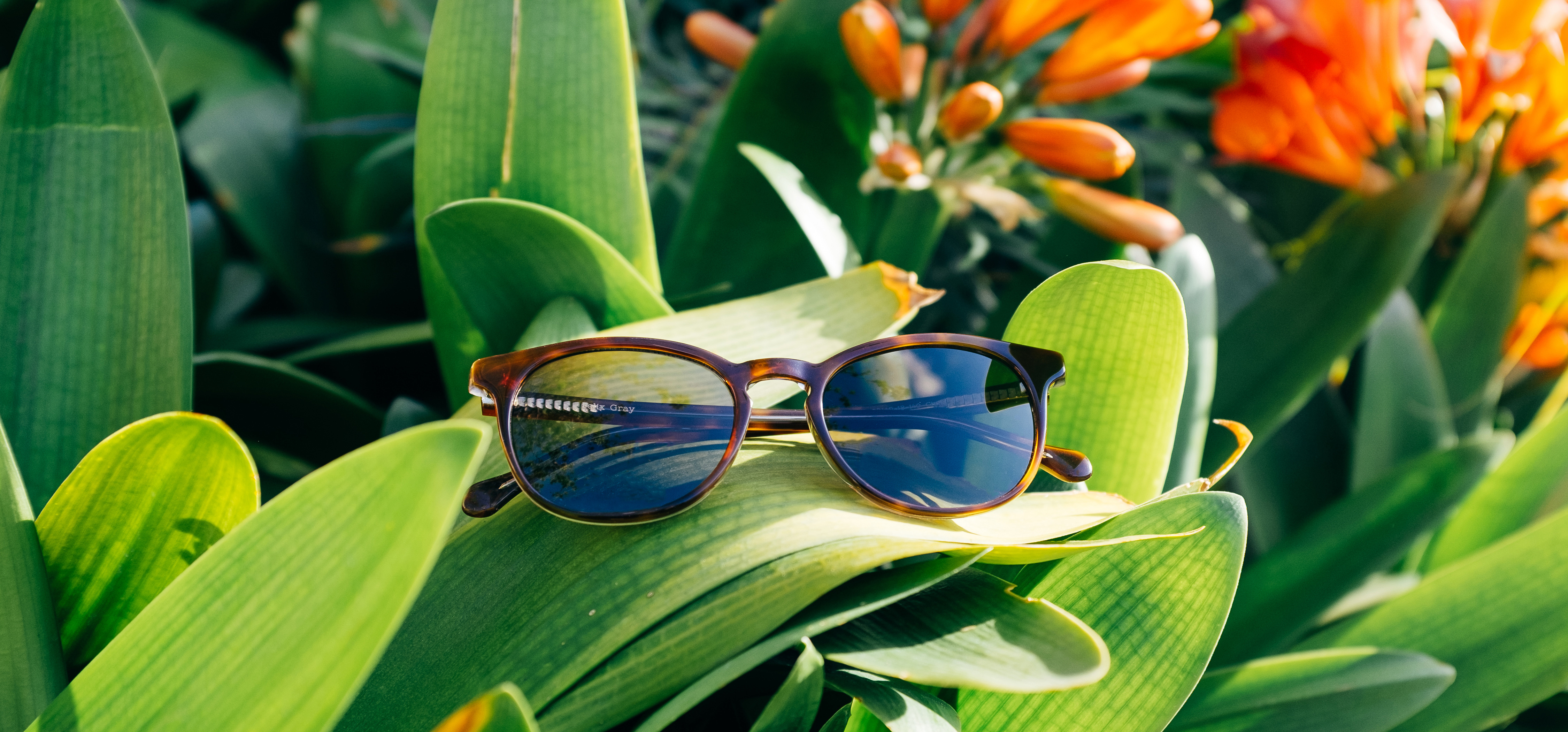 Polarized Vs Non Polarized Sunglasses Felix Gray Blog