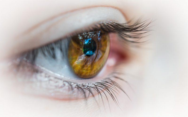 A woman's brown eye